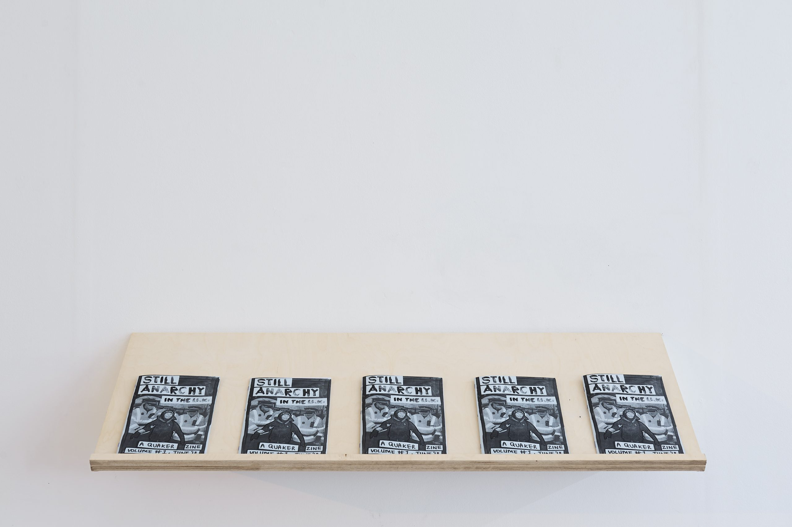 A series of zines sit on a custom made shelf